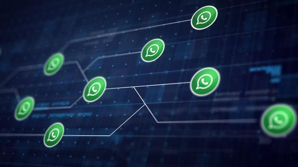 מערכת ניהול whatsapp
